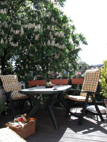 Terrasse / Balkon 'Unterm Kastanienbaum'