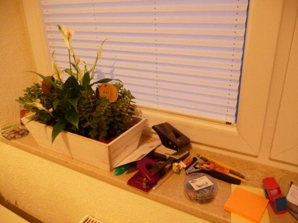 Eigentlich praktisch mit der Fensterbank, so spare ich Platz auf dem Tisch.