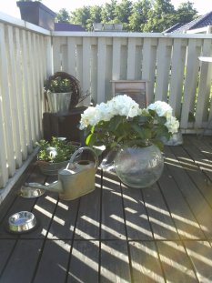 Terrasse / Balkon 'Momentaufnahme'