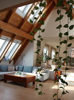Wohnung sch n einrichten wenig geld haus design und for Wohnung dekorieren mit wenig geld