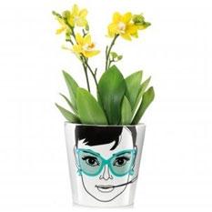 Blumentopf Elegant Audrey gro�