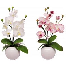 Home affaire Kunstblume, �Orchidee� (2 Stck.), rosa/weiß